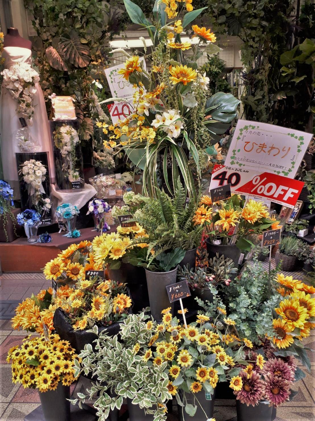 https://flower-saera.com/news/IMG_4645.JPG